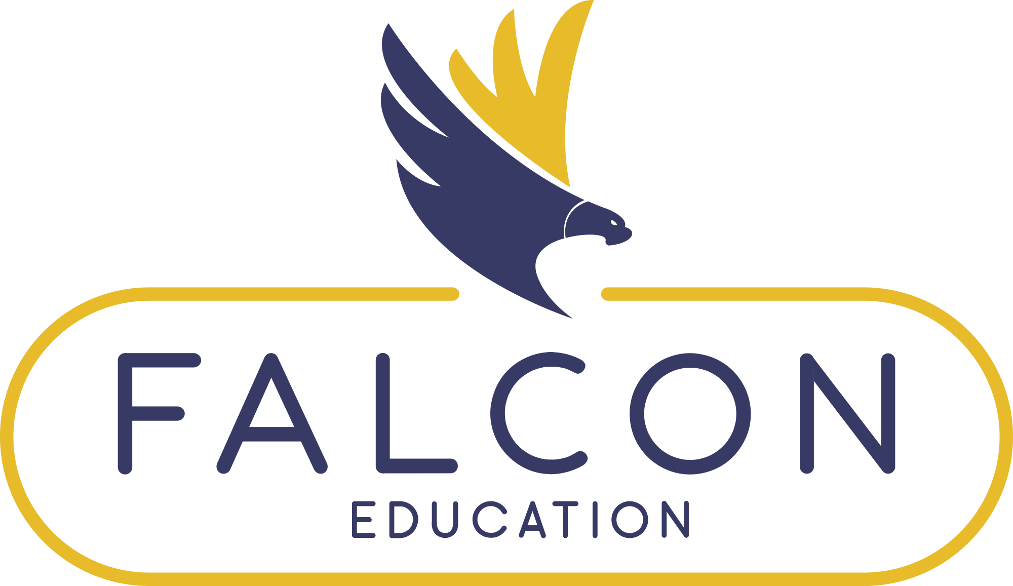 Falcon Education